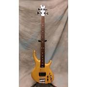 Tobias Fretless Electric Bass Guitar