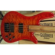 Spector Fretless Electric Bass Guitar