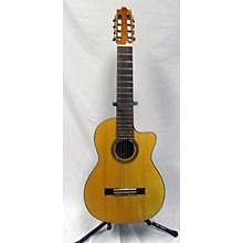 Ibanez G208CWCNT Classical Acoustic Electric Guitar