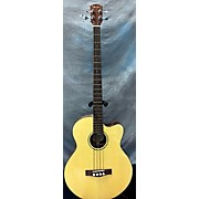 Fender GB421SCE Acoustic Bass Guitar