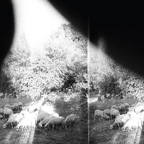 Alliance Godspeed You! Black Emperor - Asunder Sweet & Other Distress