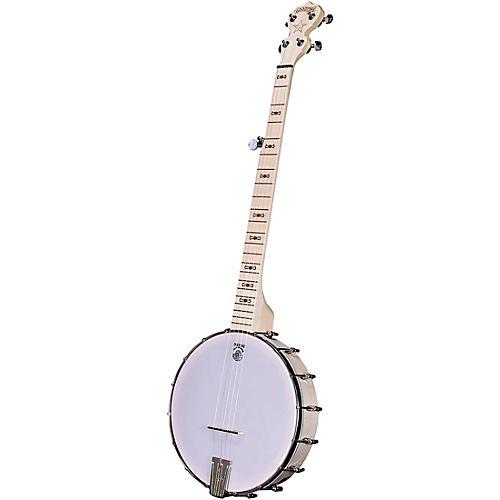 Deering Goodtime Banjo