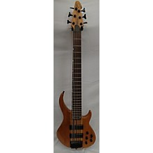 Peavey Grind BXP 6 String\ After Market Pre-amp Electric Bass Guitar