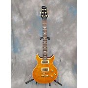 Tradition Gtr Solid Body Electric Guitar