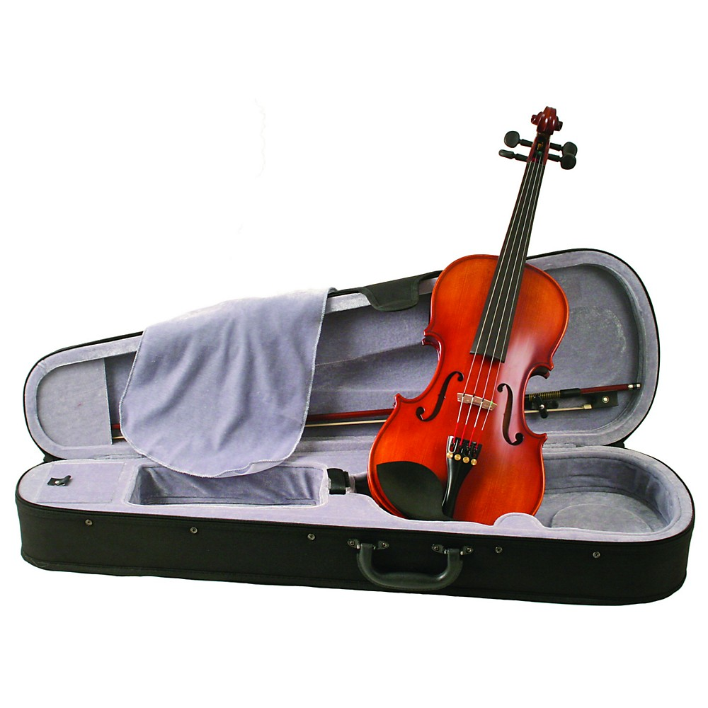 Knilling School Model Violin Outfit W/ Perfection Pegs 3/4 1300476719692