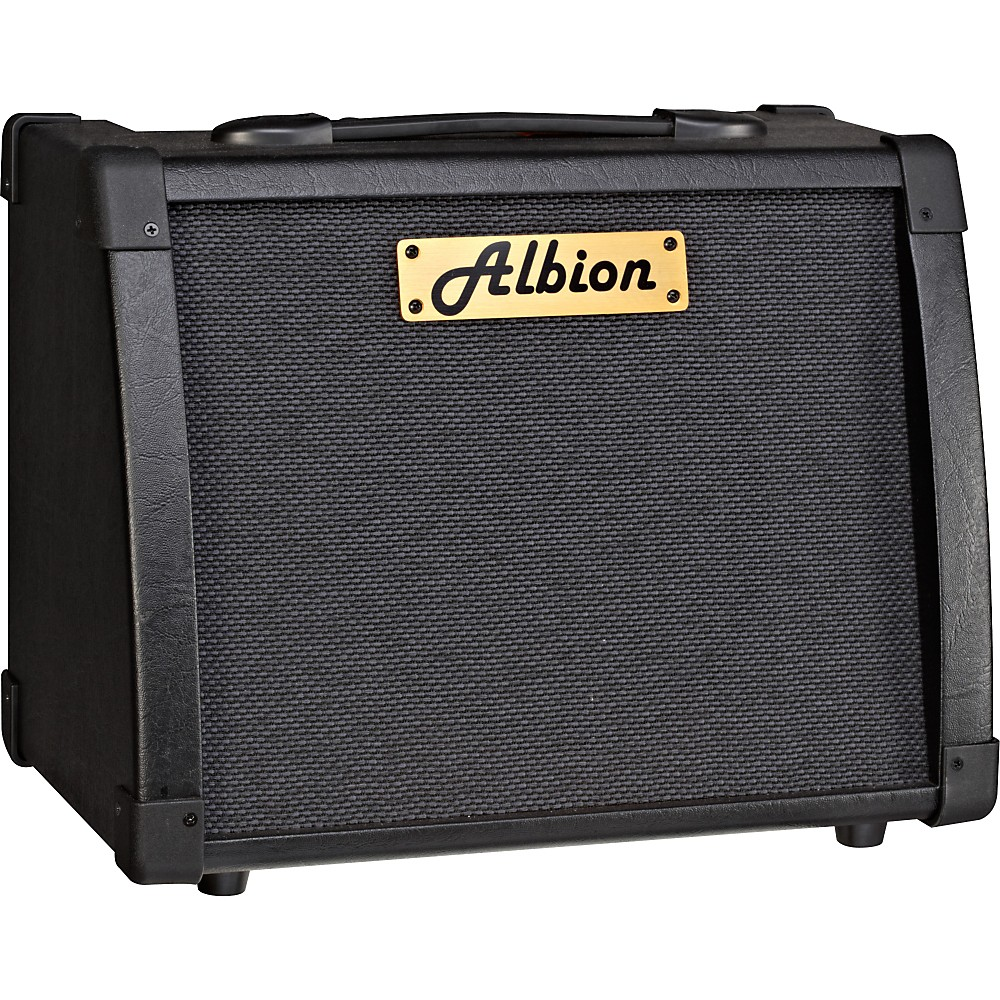 Albion Amplification Ag Series Ag40r 40W Guitar Combo Amp Black