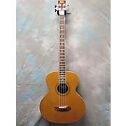 Hofner HAB01E Acoustic Bass Guitar