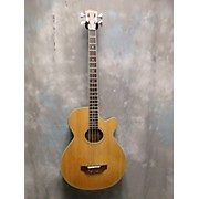 Hohner HAB40N ACOUSTIC ELECTRIC Acoustic Bass Guitar