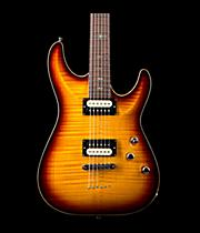Schecter Guitar Research HOLLYWOOD CLASSIC HH