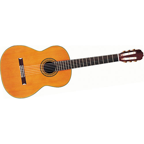 Takamine Hirade TH5 Classical Acoustic-Electric Guitar