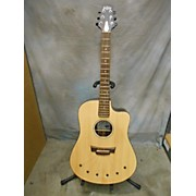 Babicz IDENTITY Acoustic Electric Guitar