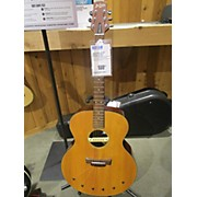 Babicz IDJRW06 Acoustic Electric Guitar