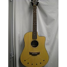 Babicz Identity DCRW06E Acoustic Electric Guitar