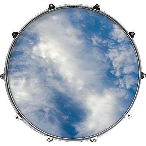 Evans Inked by Evans Nature Series Kick Drumhead