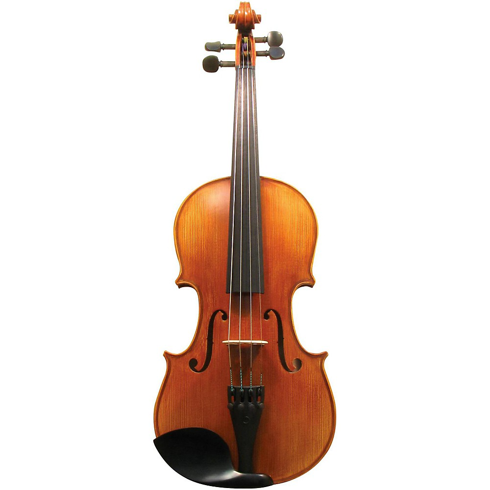 Maple Leaf Strings MLS 130 Apprentice Collection Violin Outfit 4/4 Size 1430146856880