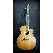 Breedlove J25/r CUSTOM SHOP Acoustic Electric Guitar