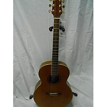 JB Player JBA-1150 Acoustic Guitar