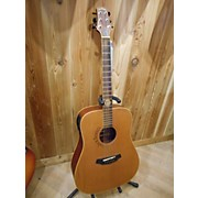 Peavey JD-AG2 NA Acoustic Electric Guitar