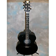 Rainsong JM1000 Acoustic Electric Guitar
