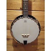 Johnson Jb100 Banjo