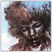 Sony Jimi Hendrix - The Cry of Love Vinyl LP