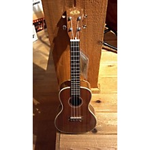 Kala Ka-sstu-c Acoustic Guitar