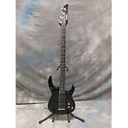 Carvin LB 20 FRETLESS Electric Bass Guitar