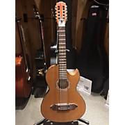 Lucida LG-bq2-e Acoustic Guitar