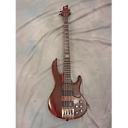 ESP LTD D4 Electric Bass Guitar
