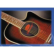 Kyser Lifeguard 6 or 12 String Acoustic Guitar Humidifier