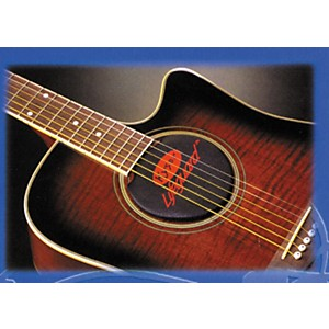 Kyser Lifeguard 6 or 12 String Acoustic Guitar Humidifier by Kyser