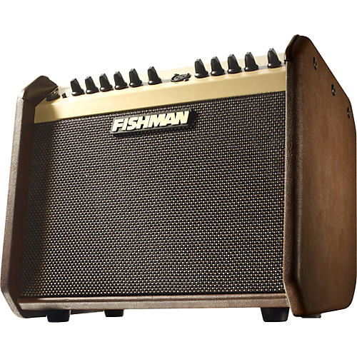 Fishman Loudbox Mini PRO-LBX-500 60W 1x6.5 Acoustic Combo Amp-thumbnail