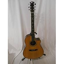 Larrivee Lv10e Acoustic Guitar
