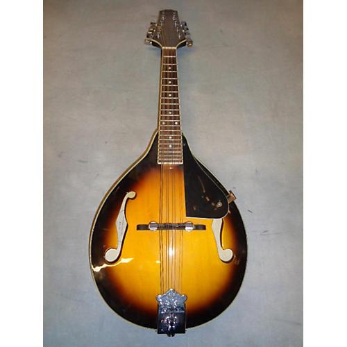 Johnson MA100 Mandolin