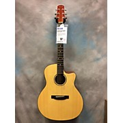 Wechter Guitars MAPLE LAKE 2612 Acoustic Electric Guitar