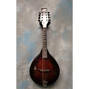 Morgan Monroe MDAM-300 Mandolin