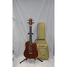 GT Classic MICROBASS Acoustic Bass Guitar