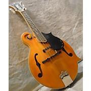 Epiphone MM50E F Style Mandolin