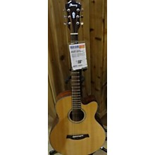 Ibanez NT1201 Acoustic Guitar