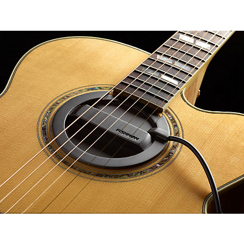 fishman neo buster single coil acoustic guitar soundhole pickup feedback buster guitar center. Black Bedroom Furniture Sets. Home Design Ideas