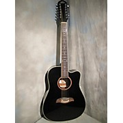 Washburn OD312CE 12 String Acoustic Electric Guitar