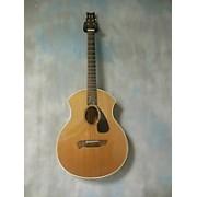 Parker Guitars PA22 Acoustic Guitar