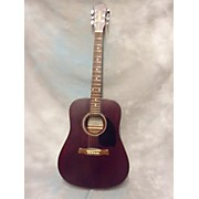 Fernandes PALISADE D30 Acoustic Guitar