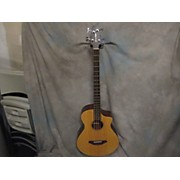 Breedlove PASSPORT BASS Acoustic Bass Guitar