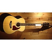 Ibanez PC25WCNT Acoustic Guitar