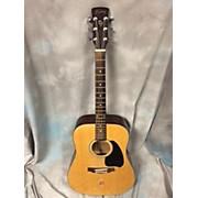 Ibanez PF4JP Acoustic Guitar
