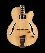 Ibanez PM200 Pat Metheny Signature Hollowbody Electric Guitar