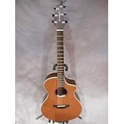 Breedlove PREMIER CONCERT LTD ROSEWOOD Acoustic Electric Guitar