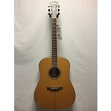 Parkwood PW310M Acoustic Guitar