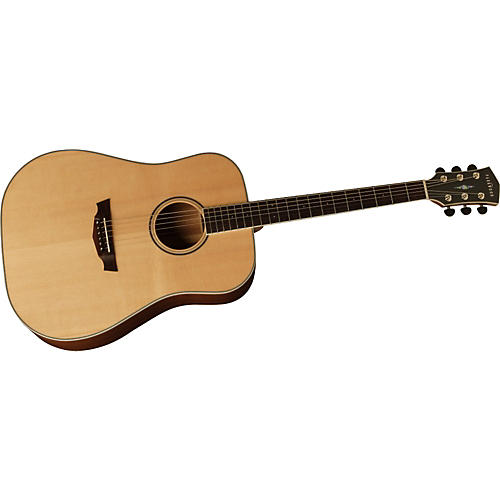 Parkwood PW310M Dreadnought Acoustic Guitar